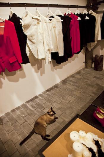 Vega Zaishi Sforzando Wang Store Opening Jianwai SOHO (1 of 1)-10